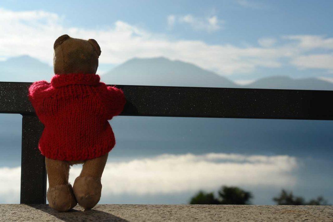 teddy-b.ch - Brione sopra Minusio (TI)