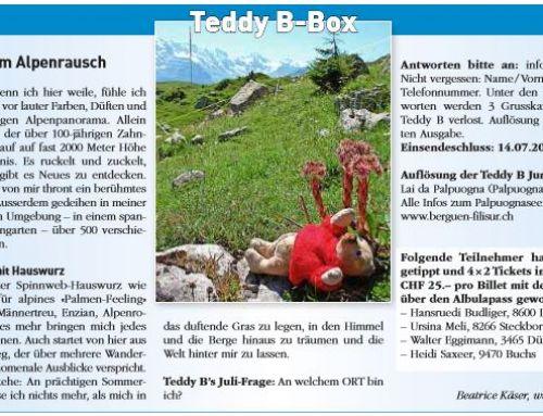 Juli 2017: Teddy B im Alpenrausch