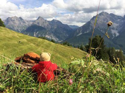 Blick auf Engadiner Dolomiten