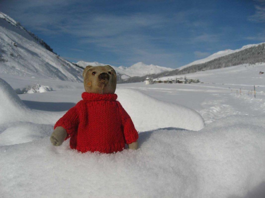 Teddy B zu Besuch im Sertigtal (Graubünden)