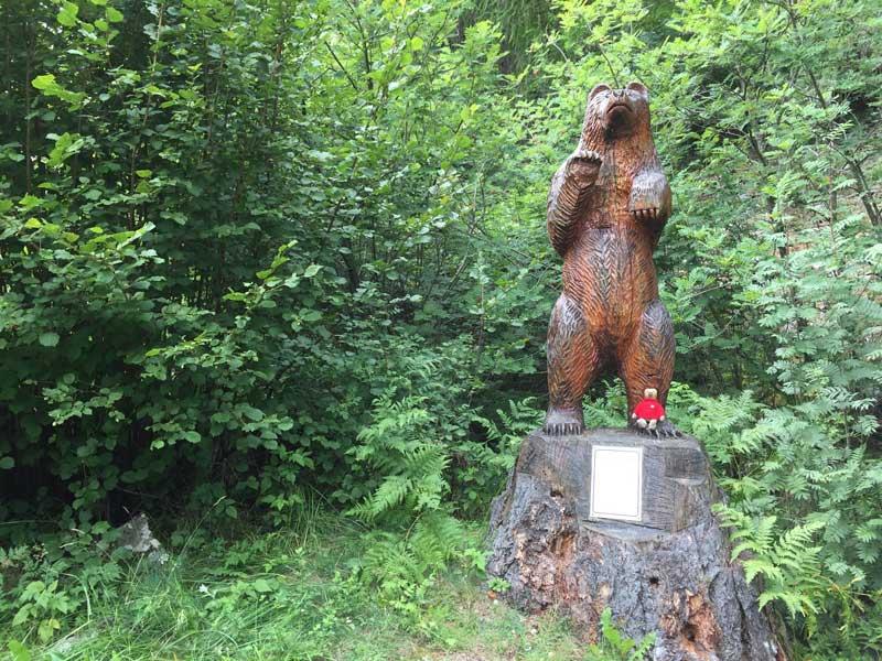 Bären am Riva dal Rom