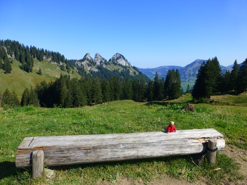 teddy-b.ch - Amdener Höhenweg (SG)