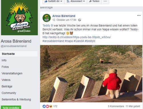 Arosa Bärenland (GR): Napa & Teddy B