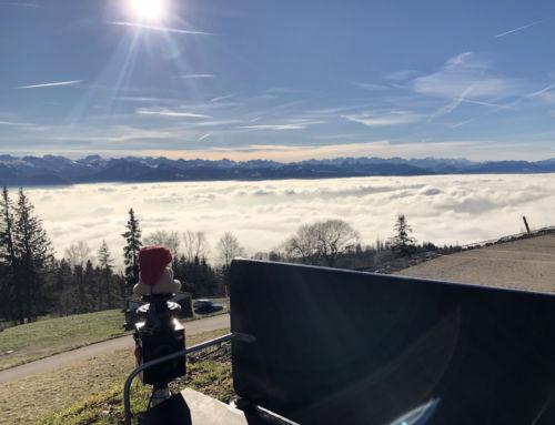 Bachtel (ZH): Schön, über dem Nebel zu wandern