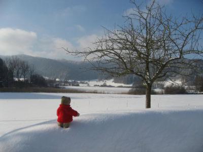 Bichelsee: Ein Zürcher im Tannzapfenland