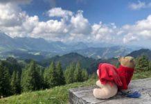 teddy-b.ch - Kronberg (AI)