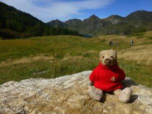 teddy-b.ch - Ritomsee