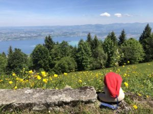teddy-b.ch - Zürichsee