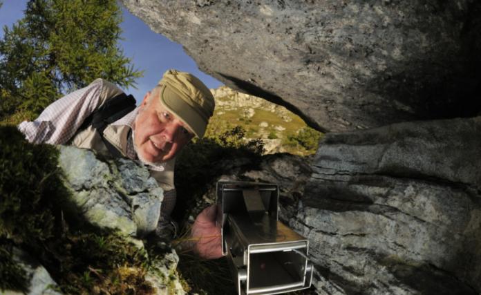 teddy-b.ch - Alp Flix, Hotspot der Biodiversität