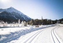 teddy-b.ch - Start der Langlaufsaison 2020 in Graubünden