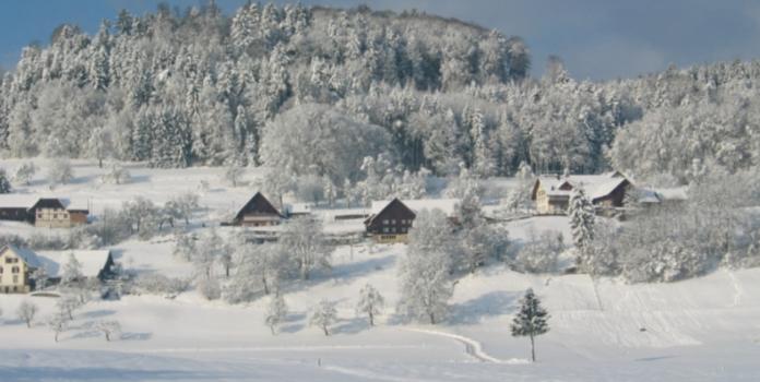 teddy-b.ch - Winterwandern - Aargau