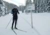 teddy-b.ch - Davos #Nordicstar