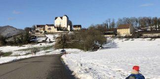 teddy-b.ch - Schloss Wildegg AG
