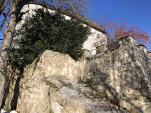 teddy-b.ch - Schloss Brunegg AG