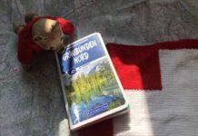 teddy-b.ch - Graubünden Nord